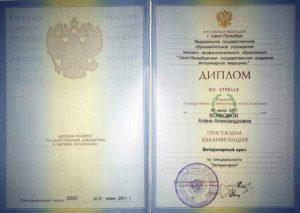 диплом Волкова Алёна Александровна